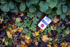 A PROPOS DE RIEN 173 (Nigel Bewley) Tags: dropped rubbish cigarettepacket fagpacket tobacco фзст fest cyrillic russian brenthamallotments ealing london england uk creativephotography artphotography aproposderien aproposnothing àproposderien november november2019 unlimitedphotos nigelbewley photologo londonist amateurphotographer appicoftheweek