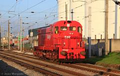 95216 Entroncamento - Alverca (J. Morgado) Tags: comboio train takargo 1550 1565 riachos entroncamento alverca locomotiva linhadonorte formaçãodemaquinistas