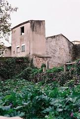 Massarelos, Porto (marioandrei) Tags: kodak pro image 100 contax g2 zeiss planar 45mm f2 t porto pena rua frontier