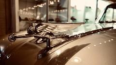 Goddess of speed (joanne clifford) Tags: packardmotorcarco johndwilson classiccars packardgoddessofspeed xf16 xe3 fujifilm automobiles mascot packardpininfarinacoupe america'spackardmuseum hoodornament packard goddessofspeed