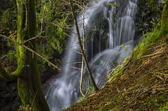 Cascade en sous bois (MyLavie) Tags: eau cascade montagne pyrenees saintengrace paysbasque bearn foret bois sousbois pentax myla mylenelavie