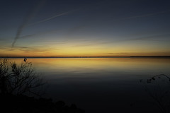 Phelps Lake Sunset (turknc) Tags: pettigrew state park creswell north carolina sunset nikon d3500 1855mm f3556 outside nikkor landscape photo
