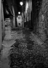 Mystery alleys (lebre.jaime) Tags: portugal beira covilhã street alley houses analogic film135 bw blackwhite nb noiretblanc pb pretobranco ptbw kodak tmax3200 tmz leicam3 summicron2050dr epson v600 affinity affinityphoto