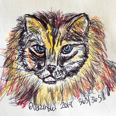 363/365 11/07/19 Cat (Lainey1) Tags: cat kitten kitty meow feline animal pet 110719 363365 363 elainedudzinski lainey1 365 doodle art sketch draw sketchoff girlzsketchy illustration abstract sketching drawing artist sketchbook graphics womensketchshit doodles doodling popart sharpies watercolor