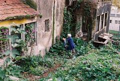 Massarelos, Porto (marioandrei) Tags: kodak proimage 100 contax g2 zeiss planar 45mm f2 t