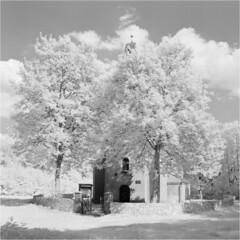 Dorotka (Piotr Skiba) Tags: infrared ir rolleiir400 6x45 dorotka będzin landscape poland pl piotrskiba church trees summer clouds hill fence stones