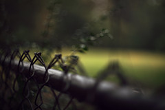 Evanesce... (Sarah Rausch) Tags: depthoffield depth vanish evanesce fadeaway fade chainlink fence bokeh helios442 helios fencefriday hff