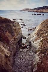 Point Lobos, Carmel, California (amy buxton) Tags: california ocean water pacificocean pointlobos birdislandtrail fall landscape monterey amybuxton stlouis