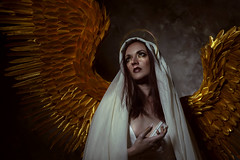 Angelus (Wurmwood Photography) Tags: nikon godox fovitec beauty angel angelic art artistic fineart creative light lighting dark shadows conceptual cosplay costume lovely face eyes female women woman makeup gold golden wings fantasy myth mythology religion ethereal magical whimsical love portrait ohio dayton columbus cincinnati photographer photography model
