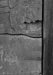 Black and White Project (ART NAHPRO) Tags: barn door sussex november autumn 2019