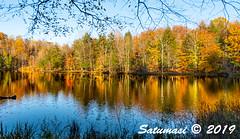 0120_untitled_20191025.jpg (Satumasi) Tags: 2019 nikond800 usa afsnikkor1424mmf28ged vacation fall northamerica michigan