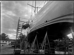sailing vessel, on stands, scaffolding, Lyman Morse Boatyard, Thomaston, Maine, Mamiya 645 Pro, mamiya sekor 45mm f-2.8, Bergger Pancro 400, Moersch Eco developer, mid September 2019 (steve aimone) Tags: sailingvessel boat ship onstands scaffolding lymanmorse lymanmorseshipbuilders thomaston maine mamiya645pro mamiyasekkor45mmf28 mamiyaprime primelens 645 mediumformat monochrome monochromatic blackandwhite 120 120film film