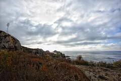 Bird Island Trail, Point Lobos, Carmel, California (amy buxton) Tags: california ocean water pacificocean pointlobos birdislandtrail fall landscape monterey amybuxton stlouis