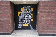 owl #lilycousins (drew*in*chicago) Tags: chicago art artist paint painter 2019 street spray cityscape
