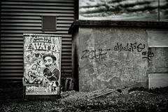 Elle n'avait jamais aimé le cirque, les clowns. Elle aimait cependant les affiches dans les rues. (LACPIXEL) Tags: affiche poster cartel rue street calle nuage cloud nube cirque circo circus clown payaso sony flickr lacpixel