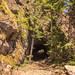Spruce Railroad Tunnel