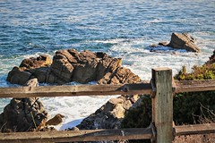 Lovers Point Park -- HFF! (Jessie T*) Tags: pacificgrove california montereybay pacificocean beach biglittlelies fence fencefriday