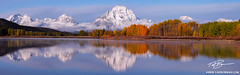 Snowy Oxbow Bend (tadbowman) Tags: wyoming grandtetonnationalpark grandtetonimages grandtetonphoto grandtetonphotography grandtetons oxbowbend snow snowy snowcapped mountmoran fall fallcolors fallfoliage fallphotos fallphotography fallaspentrees autumn autumnpictures autumnphotos autumnal autumnimages grandtetonfallphotos grandtetonautumnphotos tadbowman morning mountains mountain mountainpictures mountainimages mountainphotos mountainphotography reflection snakeriver cloudy clouds orange aspentrees aspens aspentreephotos aspentreepictures