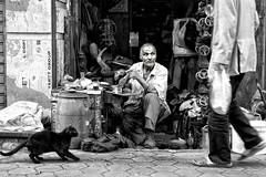 Interrupted... (Alfy's) Tags: streetphotography streetphotographybw streetphotographer streetpics streetzen candid monochrome sonya6000 35mm f18 cairo egypt