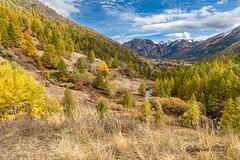 Vallée de la Clarée (jean-louis21) Tags: cascades vallée clarée automne fall colors torrent