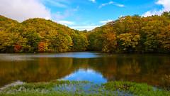 Urabandai autumn scenery (shinichiro*) Tags: 耶麻郡 福島県 日本 20191020ds23745 2019 crazyshin nikonz6 z6 nikkorz2470mmf4s october autumn inawashiro fukushima japan jp 福島 urabandai 裏磐梯 candidate