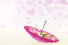 button does not like umbrellas (rockinmonique) Tags: button bear tiny teddybear small sad grumpy umbrella pink yellow hearts moniquewphotography canon canont6s tamron tamron45mm copyright2019moniquewphotography