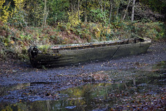 Basingstoke Canal Deepcut-Pirbright 6 November 2019 008 (paul_appleyard) Tags: basingstoke canal deepcut november 2019 abandoned boat empty water narrowboat
