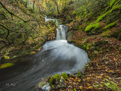 Sierra de Guadarrama, Segovia (marianoabad1) Tags: sierradeguadarrama leicadg818f2840 omdem1markii olympus waterfall water paisaje landscapephotography landscape fotografíadepaisaje fotografíadenaturaleza naturephotography nature