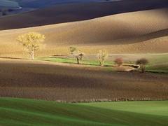 Crete senesi (Jolivillage) Tags: jolivillage paysage landscape paesaggio campagne campagna cretesenesi sienne siena toscane tuscany toscana italie italy italia europe europa lumière light luce geotagged picturesque fabuleuse