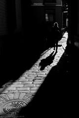 Shadow (ralcains) Tags: sevilla seville siviglia andalousia andalucia andalusia españa spain blackwhite blancoynegro bw blackandwhite monochrome monochromatic monocromo monocromatico monochrom greyscale contraluz backlighting calle fotografiadecalle street streetphotography ngc telemetrica rangefinder leica leicam leicamonochrom summicron 35mm