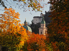 Autumn is a season for details... (echumachenco) Tags: autumn fall autumncolors salzburg cathedral dom festung fortress hohensalzburg tree leaf foliage frame dome spire architecture baroque november canonpowershotg10 austria österreich