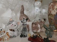 Daily Colours - The Glass Menagerie (Pushapoze (MASA)) Tags: cats vitrine menagerie glass