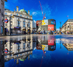 Reflect - Piccadilly Circus, London, UK (davidgutierrez.co.uk) Tags: city urban london art architecture photography nikon nikond810 davidgutierrezphotography uk travel blue paris color night hongkong tokyo photographer bilbao bridge people person twilight bluehour londonphotographer england colour colors colours unitedkingdom vibrant londres colourful londra ロンドン londyn 伦敦 런던 лондон greatbritain beautiful europe cityscape britain capital arts landmark structure attraction ultrawideangle d810 1424mm davidgutierrez afsnikkor1424mmf28ged street reflection puddle traffic streetphotography bluesky icon historic piccadillycircus iconic touristattraction 倫敦
