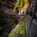 Gorges De La Dala - Leukerbad Switzerland - Travel photography