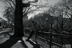 early spring 2019@Kö, Düsseldorf 2 (Amselchen) Tags: streetphotography mono bnw blackandwhite light shadow season spring germany pedestrians people fujifilm fujinon fujifilmxt2 xf1855mmf284rlmois streettrees