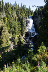 Alexander Falls, BC, Canada (Peter Starling) Tags: canada peterstarling bc british columbia waterfall fall falls water white trees sun shadow whistler provincial park olympic callaghan road