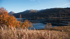 Autumn Glory D75_0541 (iloleo) Tags: autumn foliage colourful grasses mountains landscape norway lofoten nikon d750 nature scenic