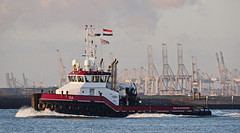 ISA (kees torn) Tags: isa tug ahts hoekvanholland nieuwewaterweg offshore landfallmarinecontractors
