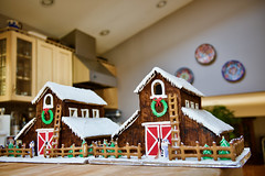 2017 Gingerbread house! (ineedathis, Everyday I get up, it's a great day!) Tags: barn redbarndoors wreath bow christmastrees ladder windows farm oldmacdonaldhadafarm snowman fence snow royalicing roof icicles carrot buttons coal gingerbreadhouse2017 miniature sugarwork gumpaste modeling baking nikond750 kitchen
