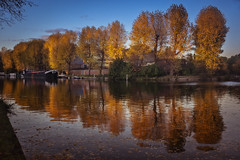 Golden hour at the canal (Wim van de Meerendonk, loving nature) Tags: autumn tree trees goldenhour reflection ship canal water utrecht wimvandem blue color colors colours colour landscape netherlands nederland outdoors outdoor provincieutrecht sony sun thenetherlands z