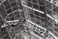 Glasshouse roof, NBG, Glasnevin, Dublin 9 (Mark Carmody) Tags: film filmisnotdead filmphotography filmisalive ishootfilm canon canona1 kosmo foto kosmofoto 100 dublin mayo