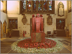 D-Day Poppy Instalation ... (** Janets Photos **) Tags: uk eastyorkshire hullminster displays exhibitions poppies dday