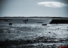 Lindisfarne (2071) (red.richard) Tags: sea bw beach boats nikon shore lindisfarne d800 holyisle cof095 cof095tino cof095dmnq