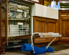 -20191108It Works!3-Edit (Laurie2123) Tags: laurieabbotthartphotography laurietakespics laurieturner laurieturnerphotography laurie2123 nikkor2470mm nikond800e odc odc2019 ourdailychallenge kitchen