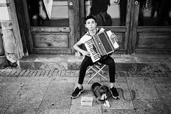 R4-017-7 (David Swift Photography) Tags: davidswiftphotography krakowpoland musicians buskers streetmusicians accordians dogs pets streetphotography streetportraits 35mm olympusstylusepic ilfordxp2