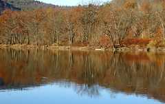Fall Along The River (Diane Marshman) Tags: susquehanna river water fall autumn season orange green tree colors foliage reflections reflecting sky mountain pa pennsylvania state nature brush weeds still calm