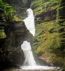 St Nectan's Glen (symzie) Tags: stnectansglen cornwall waterfall legend supernatural nature water green westcountry england holiday