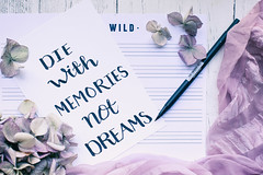 Quote of the day... (judi may) Tags: brushlettering pen paper writing quote flatlay stilllife tabletopphotography driedhydrangea hydrangea petals flowers canon5d 50mm