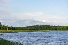 Grafton Lake (TheNovaScotian1991) Tags: graftonlake kejimkujiknationalpark queenscounty novascotia canada nikond7100 water bluesky clouds nikkor55300mmf4556gedvr landscape lake outdoor forest woods softwoods waterplants