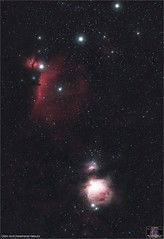 Orion and Horsehead Nebula (The Dark Side Observatory) Tags: tomwildoner night sky deepsky space outerspace williamsoptics telescope apo asi290mc zwo astronomy astronomer science canon canon6d deepspace guided weatherly pennsylvania observatory darksideobservatory stars star tdsobservatory backyardeos earthskyscience redcat m41 m42 orion orionnebula orionsbelt horseheadnebula horsehead